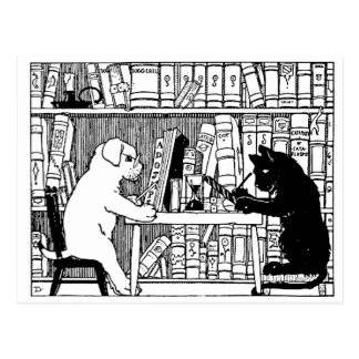Cat and Dog in the Library Postcard
