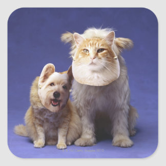 Cat and dog with masks square sticker