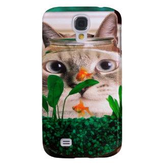 Cat and fish - cat - funny cats - crazy cat