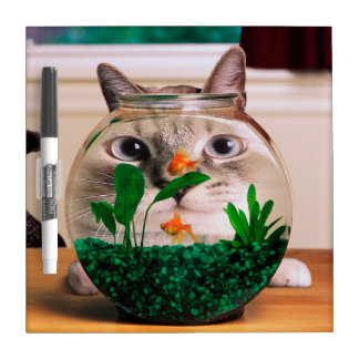 Cat and fish - cat - funny cats - crazy cat dry erase board