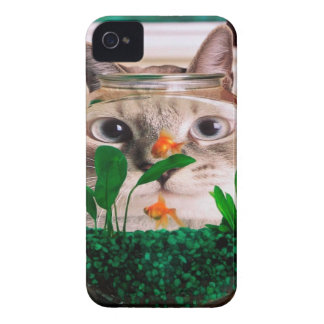 Cat and fish - cat - funny cats - crazy cat iPhone 4 cover