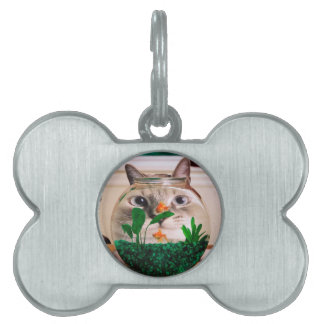 Cat and fish - cat - funny cats - crazy cat pet ID tag