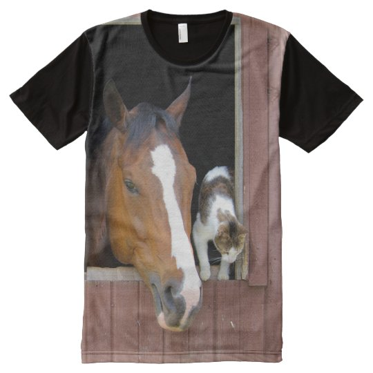 Cat and horse - horse ranch - horse lovers