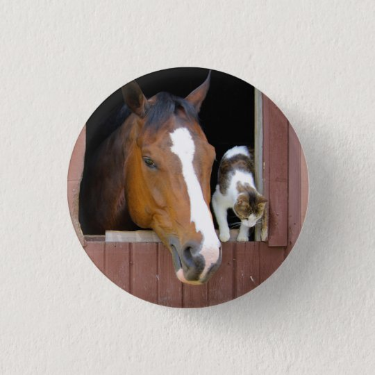 Cat and horse - horse ranch - horse lovers 1 inch round button