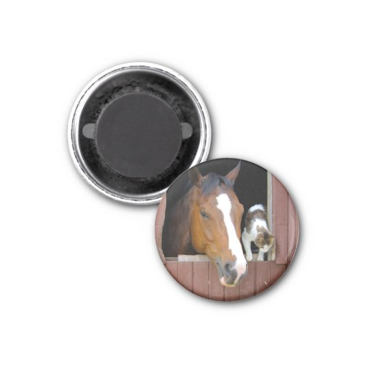 Cat and horse - horse ranch - horse lovers 1 inch round magnet