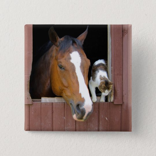 Cat and horse - horse ranch - horse lovers 2 inch square button