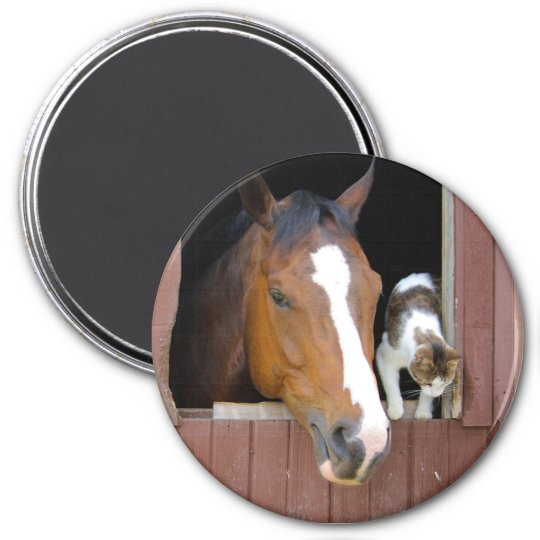 Cat and horse - horse ranch - horse lovers 3 inch round magnet
