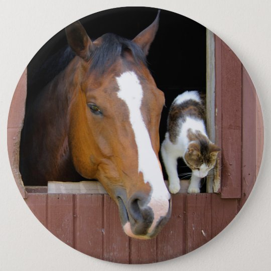 Cat and horse - horse ranch - horse lovers 6 inch round button