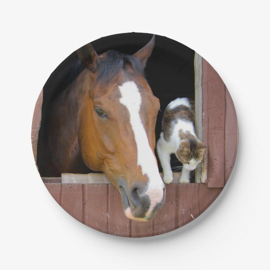 Cat and horse - horse ranch - horse lovers 7 inch paper plate