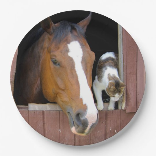 Cat and horse - horse ranch - horse lovers 9 inch paper plate