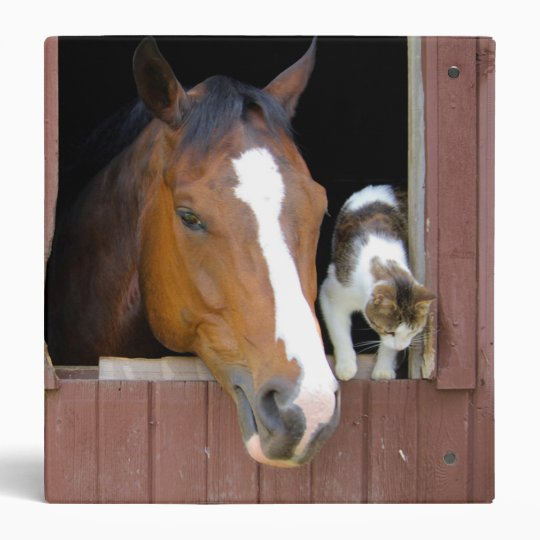 Cat and horse - horse ranch - horse lovers binders