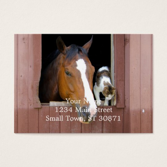 Cat and horse - horse ranch - horse lovers business card
