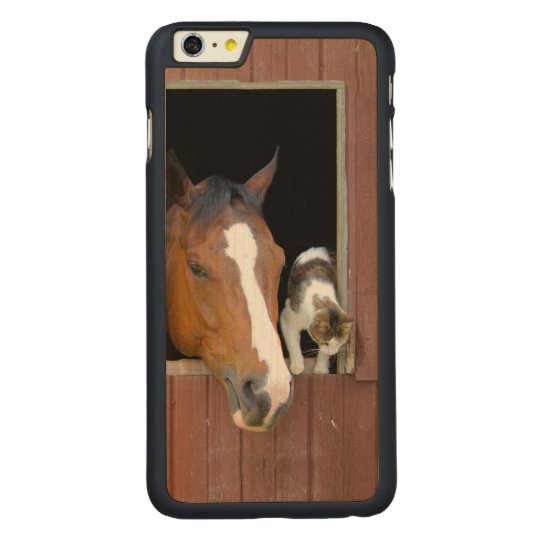 Cat and horse - horse ranch - horse lovers carved® maple iPhone 6 plus case