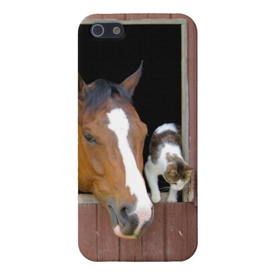 Cat and horse - horse ranch - horse lovers case for the iPhone 5