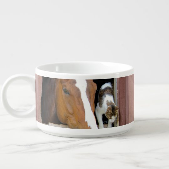 Cat and horse - horse ranch - horse lovers chili bowl