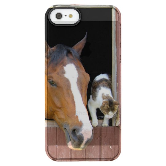 Cat and horse - horse ranch - horse lovers clear iPhone SE/5/5s case