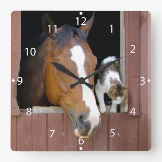 Cat and horse - horse ranch - horse lovers clocks