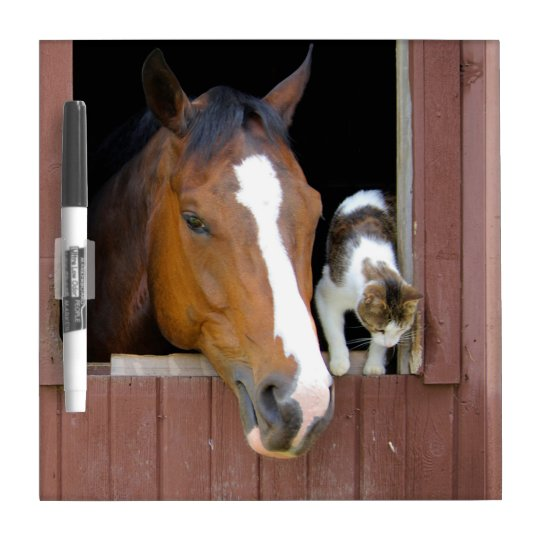 Cat and horse - horse ranch - horse lovers dry erase board