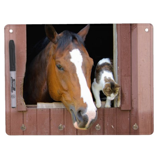 Cat and horse - horse ranch - horse lovers dry erase boards