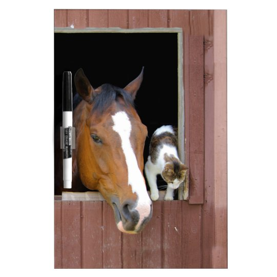 Cat and horse - horse ranch - horse lovers Dry-Erase whiteboard