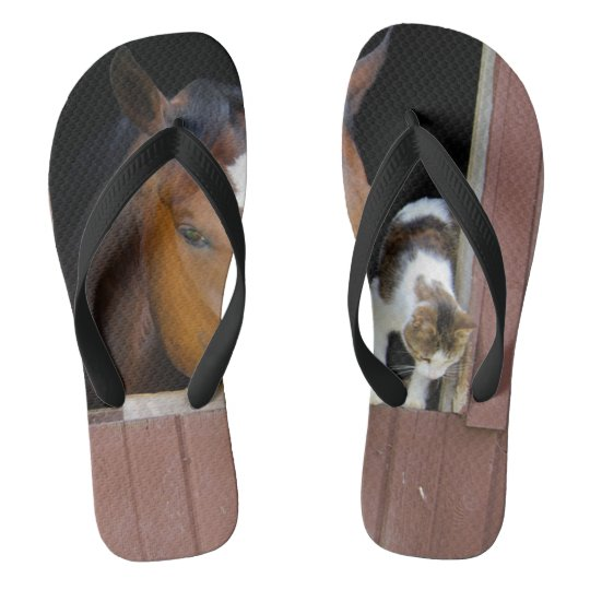 Cat and horse - horse ranch - horse lovers flip flops