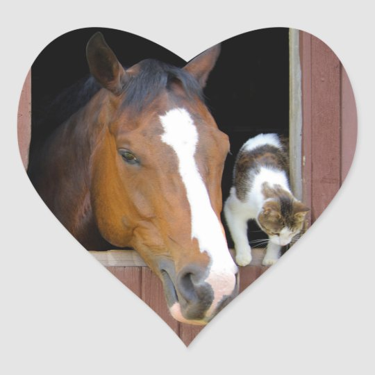 Cat and horse - horse ranch - horse lovers heart sticker