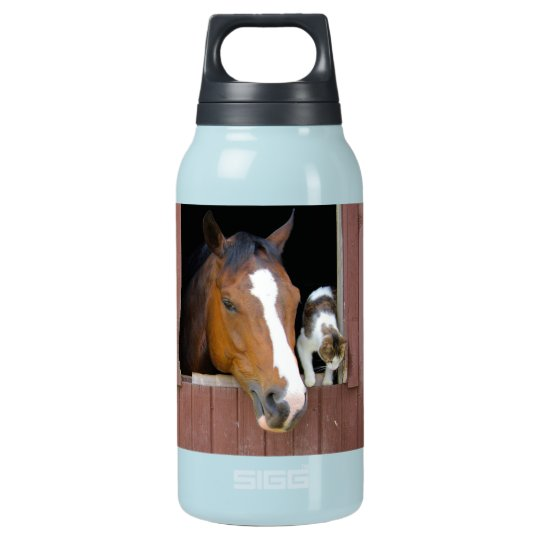 Cat and horse - horse ranch - horse lovers insulated water bottle