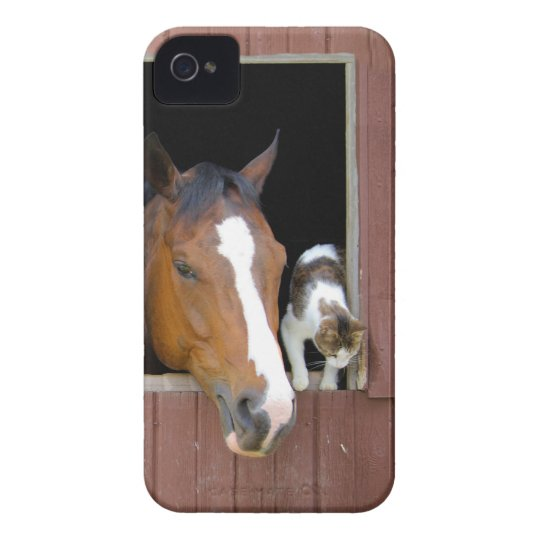 Cat and horse - horse ranch - horse lovers iPhone 4 Case-Mate case