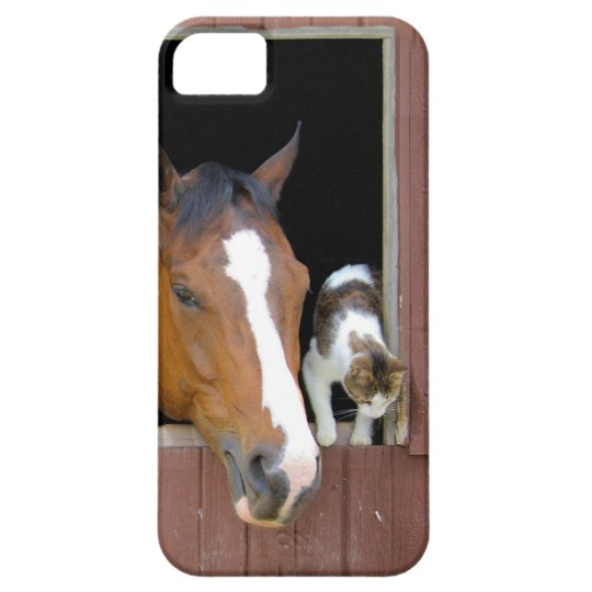 Cat and horse - horse ranch - horse lovers iPhone 5 case