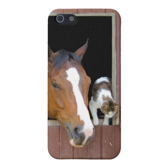 Cat and horse - horse ranch - horse lovers iPhone 5 cover