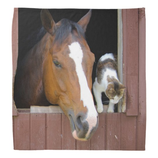 Cat and horse - horse ranch - horse lovers kerchief