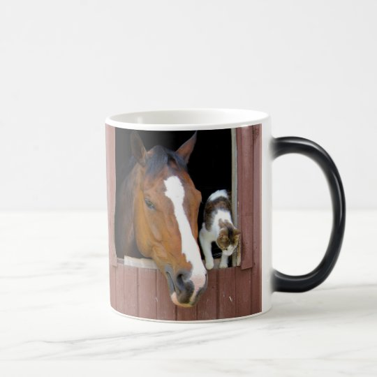 Cat and horse - horse ranch - horse lovers magic mug