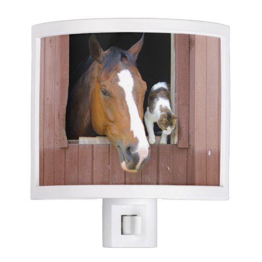 Cat and horse - horse ranch - horse lovers night lites