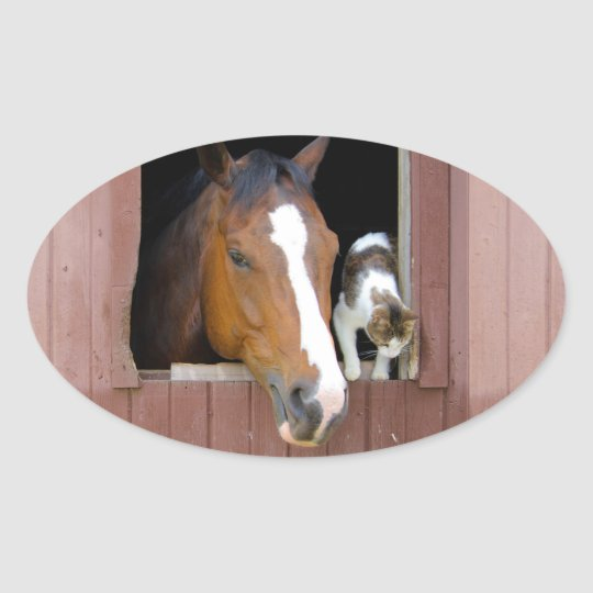 Cat and horse - horse ranch - horse lovers oval sticker