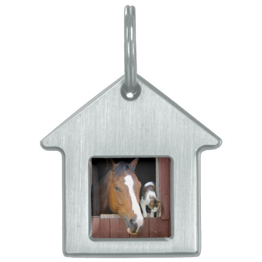 Cat and horse - horse ranch - horse lovers pet ID tag