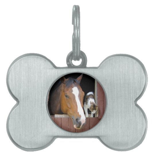 Cat and horse - horse ranch - horse lovers pet tag