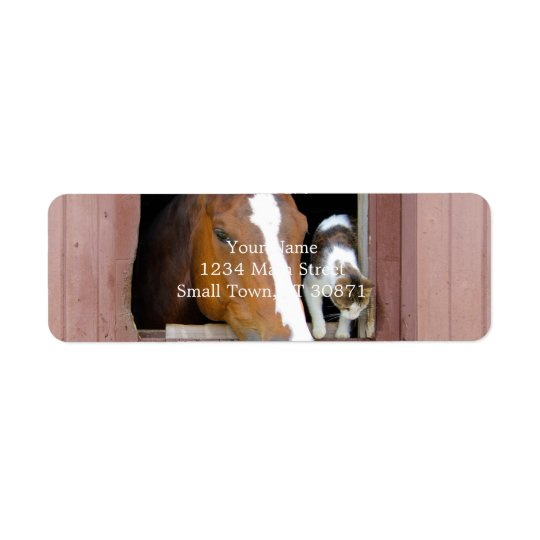 Cat and horse - horse ranch - horse lovers return address label