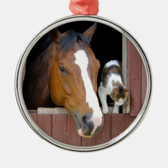 Cat and horse - horse ranch - horse lovers Silver-Colored round ornament
