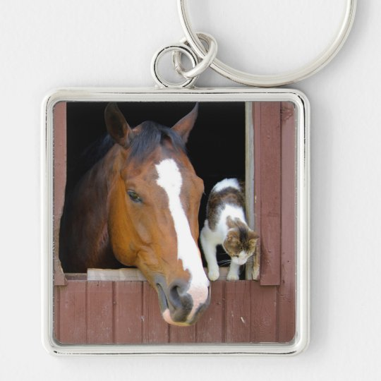 Cat and horse - horse ranch - horse lovers Silver-Colored square keychain