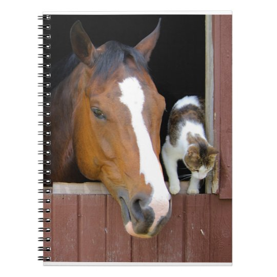 Cat and horse - horse ranch - horse lovers spiral notebook
