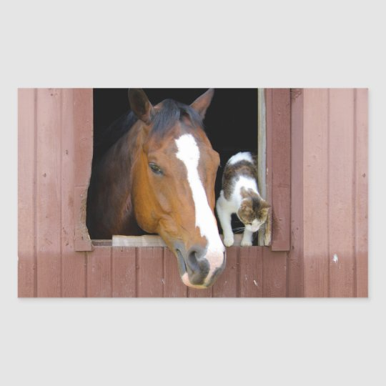 Cat and horse - horse ranch - horse lovers sticker