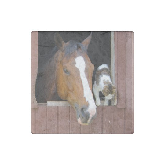 Cat and horse - horse ranch - horse lovers stone magnets