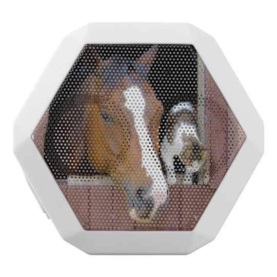 Cat and horse - horse ranch - horse lovers white bluetooth speaker