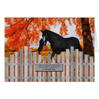Cat and Horse Lover's Friendship Greeting Card