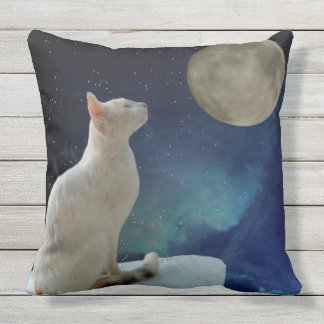 Cat and Moon Outdoor Pillow