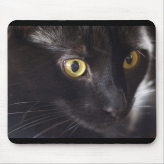 Cat and Mouse Mouse Pad