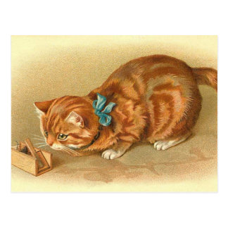 """Cat and Mouse"" Postcard"