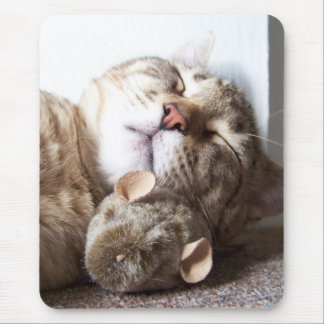 Cat and Mouse Sleep Mouse Pad