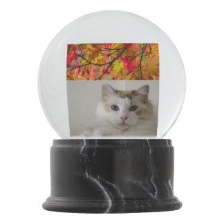 Cat and Nature Photo Globe Snow Globe