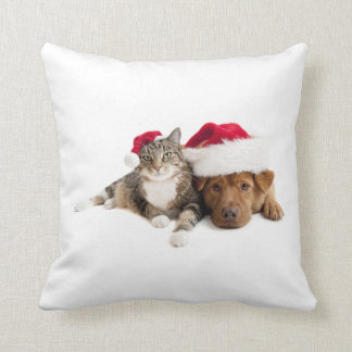 Cat and Nice Christmas Dog! Throw Pillow
